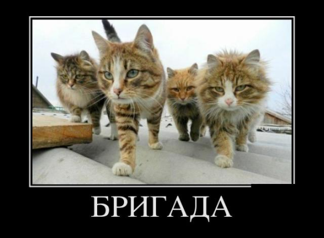 post-11207-1355741659_thumb.jpg
