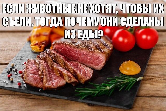 Еда-животные.jpg