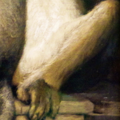 ape_002.png