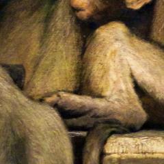 ape_005.png