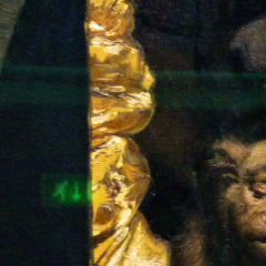 ape_011.png