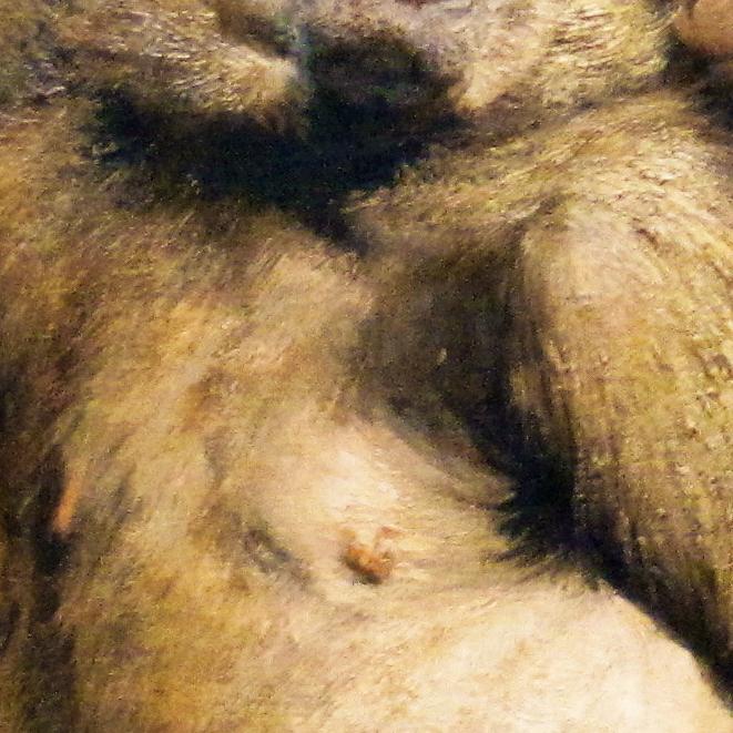 ape_009.png