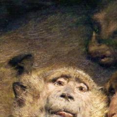ape_014.png
